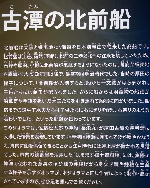IMG_7475.jpg