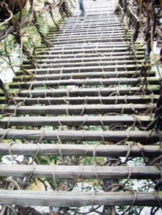 かずら橋352.jpg